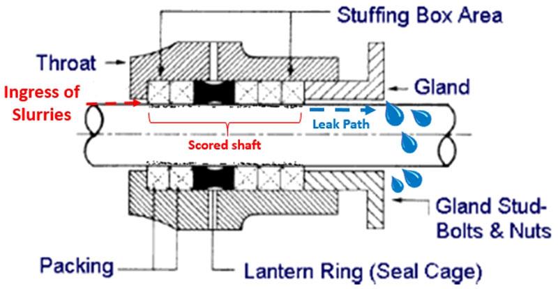 Packing Seal